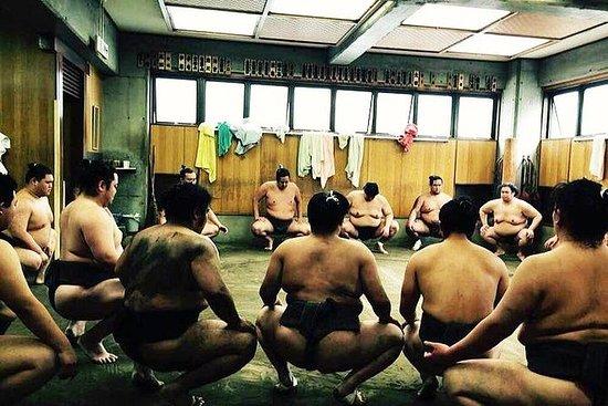 Regardez les sumos s'entraîner le...