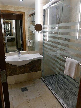 Swiss International Olive Tree Amman: Our bathroom