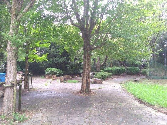 Hirano Tenbo Park