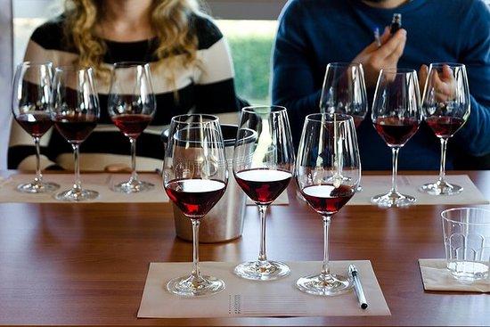 Weintour Barolo ab Mailand