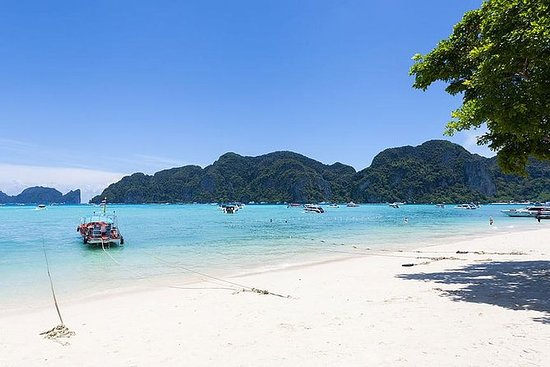 Phi Phi 4 Islands Snorkeling Tour By...