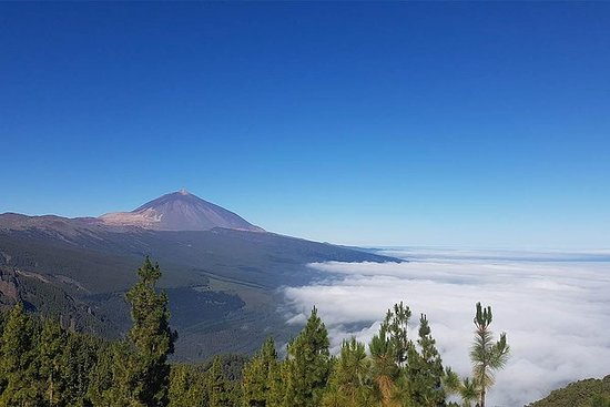 Drosjetur gjennom Teide nasjonalpark og...