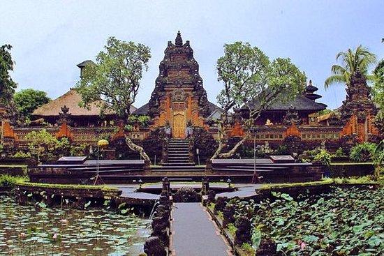 Bali Full Day Tour - Ubud Art Shopping...