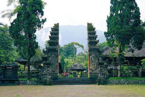 バリ島全日ツアー–タナロット寺院のある田園地帯ツアーブドゥグル