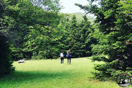 Nature Yoga & Hike Vol.2