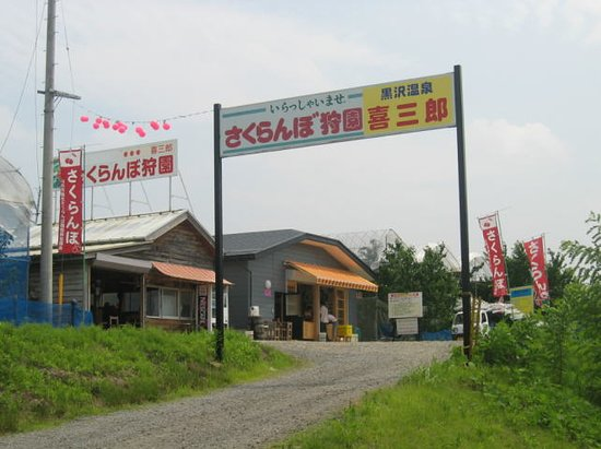 Kisaburo Cherry Farm