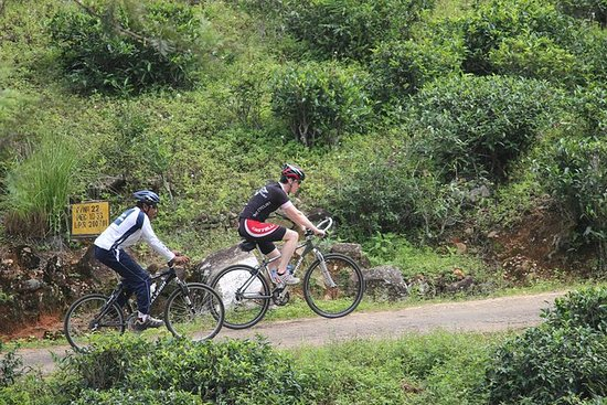 Cycling in Nuwera Eliya
