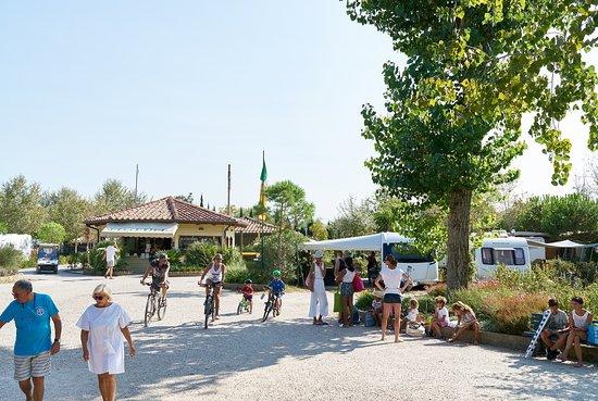 Viareggio, Italien: Camping Paradiso, ingresso e reception