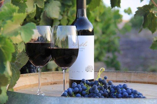 Moonambel, Austrália: Bigibila Wines - Free Range Wines from the Pyrenees.