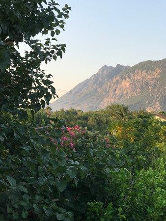 Caretta Caretta Pension: View from our balcony