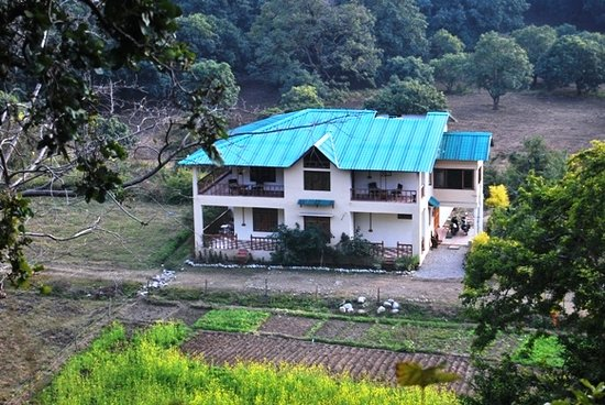 Lodge, organic kitchen garden & the forests around from the opposite hill