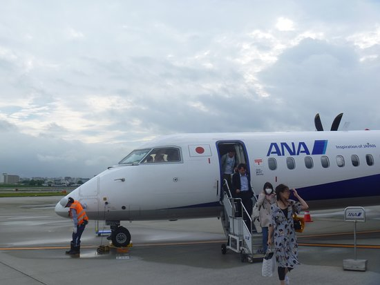 ANA (All Nippon Airways): NH736