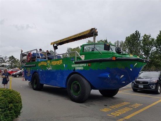 Halifax Harbour Hopper Tour: The vehicle