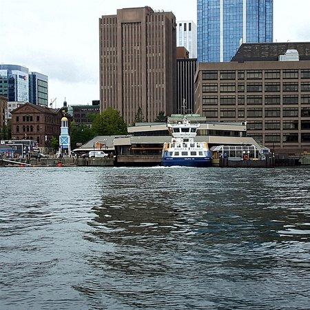 Halifax Harbour Hopper Tour: The view