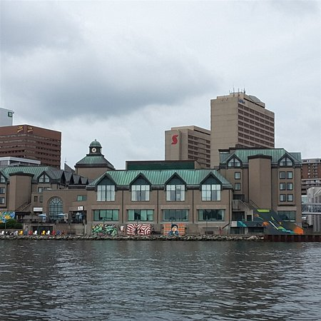 Halifax Harbour Hopper Tour: More view from harbor