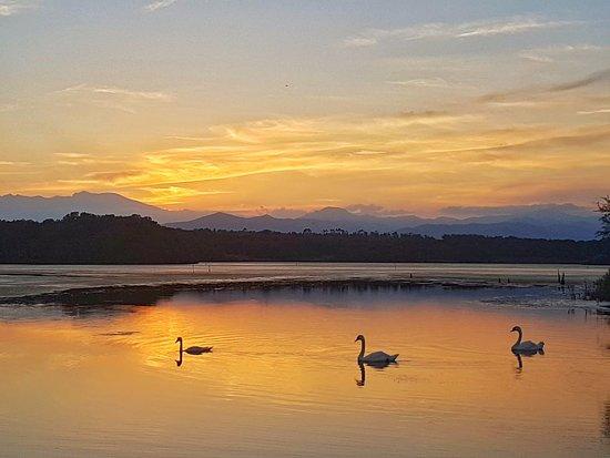 Riva Bella Naturiste - Resort & Camping: RIVA BELLA NATURE &THALASSO SPA RESORT coucher de soleil avec cygnes sauvages  sur l'étang de mer face à la thalasso