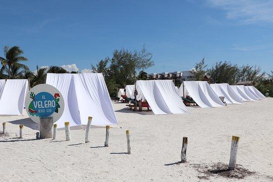 El Velero Beach Club: Muy diferente el concepto eso es Valor a la vista a Holbox