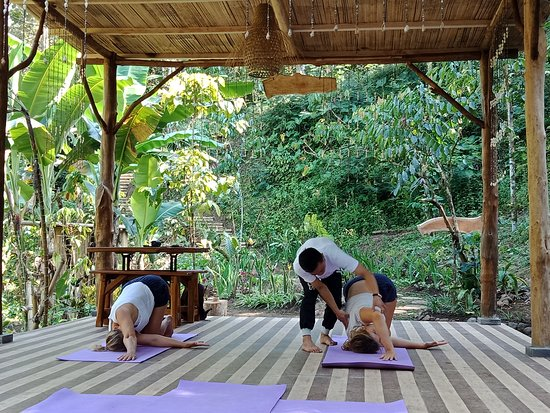 Amreta Yoga Class,,, munduk area  Contact us whatsApp :+6282144101272