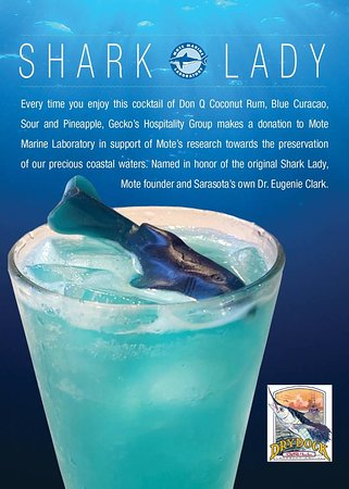 Dry Dock Waterfront Grill: Shark Lady let's support Mote Marine
