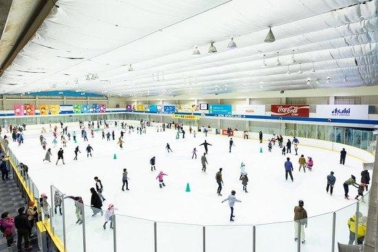 Howa Sportsland Ice Skate