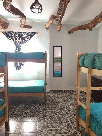 Rey Lagarto Hostel: Pieza compartida de 8 camas