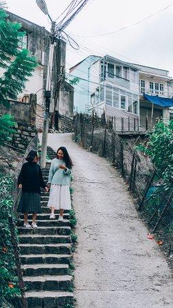 Da Lat, Vietnam: Dốc Nhà Bò - Đà Lạt
