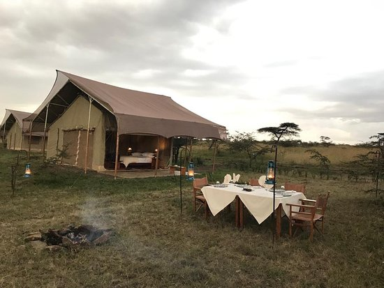 Kandili Camp: Honeymoon dinner set up