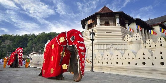 The Ceylon Tours