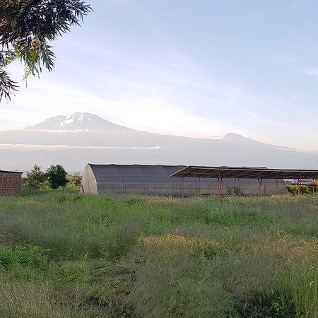 Moshi, Tanzania: ChiefCampsite view point.