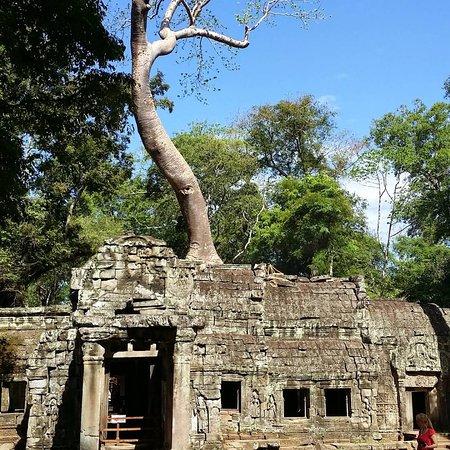 tuk tuk Siem Reap ta phorm temple Cambodia
