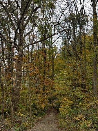 Gunpowder Falls State Park Bradshaw 2019 All You Need