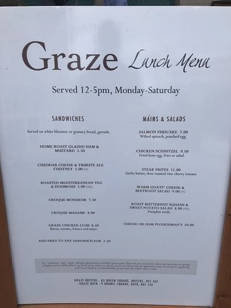 Graze Bar & Chop House: Chicken schnitzel with egg and chips and steak frites combined!