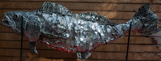 A recycling sculpture created by environmental artist Jacha Potgieter of the endangered Totoaba fish. Made using recycled plastic and tin cans.