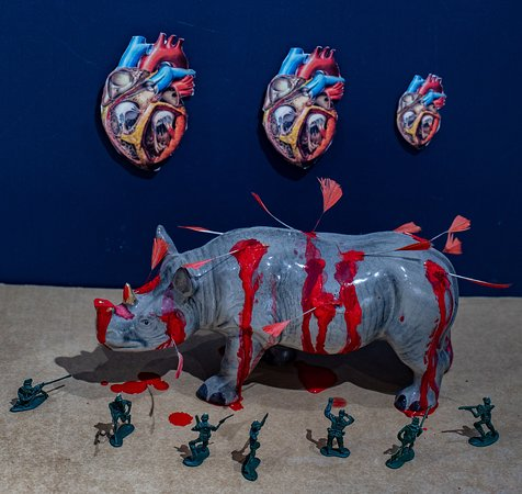 An installation and photograph created by environmental artist Jacha Potgieter in reaction to the news that China has lifted the ban on trading of Rhino horn