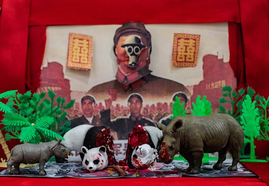 The Scent of Love - an installation created by environmental artist Jacha Potgieter to highlight the fact that China spends millions on protecting the pandas but then thinks nothing of trading in rhino horn, pushing the rhino to extinction.