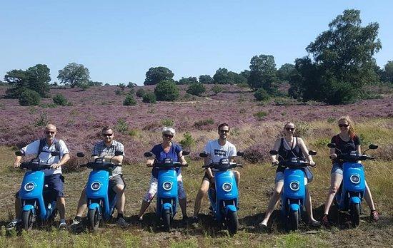 VeluweScooter | Veluwe Actief: Voor groepen ideaal om de bloeiende heide te bekijken!