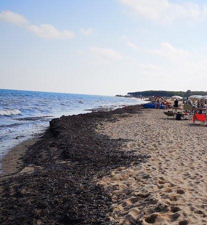 Spiaggia privata dell'albergo