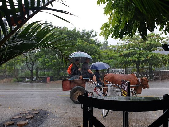 Tam cốc thời tiết mưa nhiều quá.