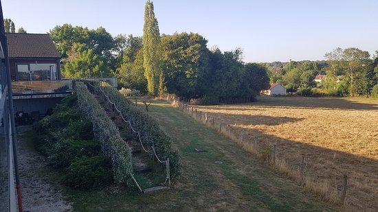 Le Cadusia: vue sur la terrasse et le champ aux vaches...