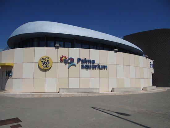 Skip the Line: Palma Aquarium Entrance Ticket: Palma