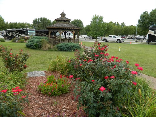 Tripadvisor - RV Sites - Front Row Seen When coming Into Park - Pull Thru Sites - صورة Cottonwoods RV Park، Columbia