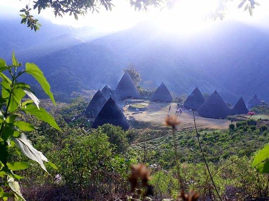 Flores, Indonésie: Desa Wae Rebo