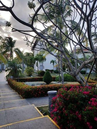 Sol Rio de Luna y Mares: More gardens