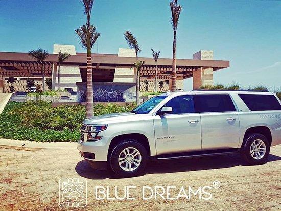 Blue Dreams Transfers