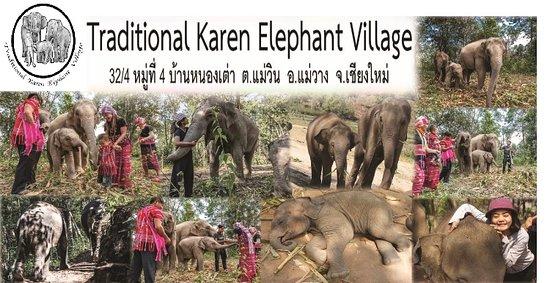 Traditional Karen Elephant Village