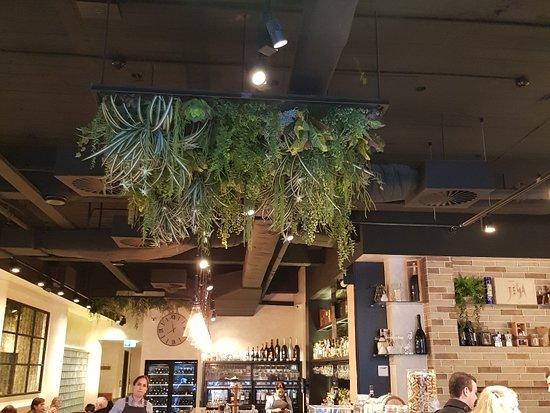 Great Spot In Woollomoloo For A Coffee