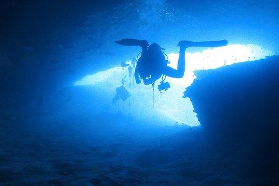 UnderPressure Explorers | Quality Diving