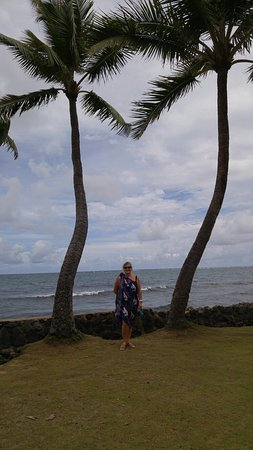 Aloha Circle Island Tour
