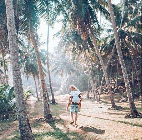 Srilanka Sanjeewa Tours: Amazing Srilanka
