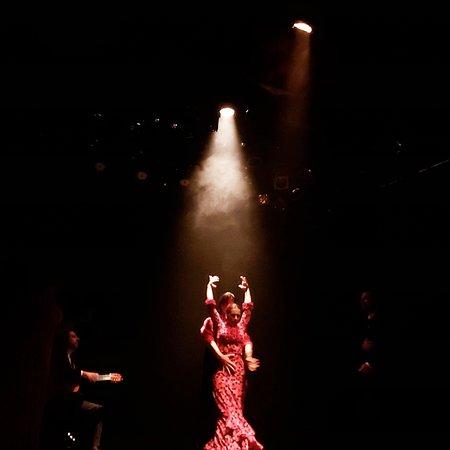 Teatro Flamenco  Uma noite inesquecível ,artistas de primeira, local perfeito e atendimento magnífico!!!!